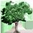 5 Underused Trees